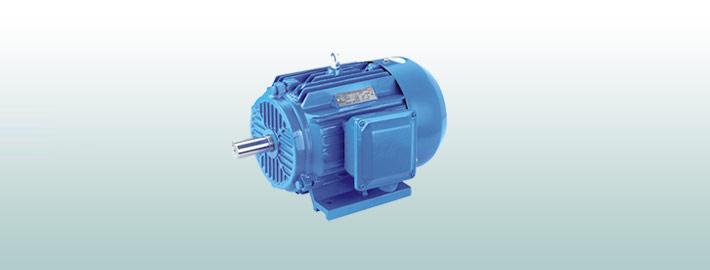 ye2系列高效三相异步电动机